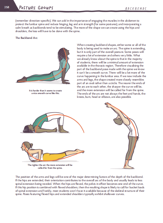 Anatomical Concepts to the Yoga