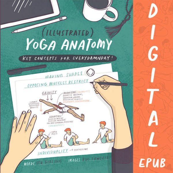 Illustrated Yoga Anatomy eBook | Yoga Asanas Postures & Movements