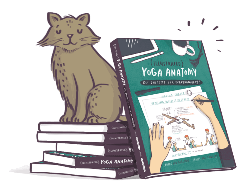 stack of yoga anatomy books with Gerald the cat